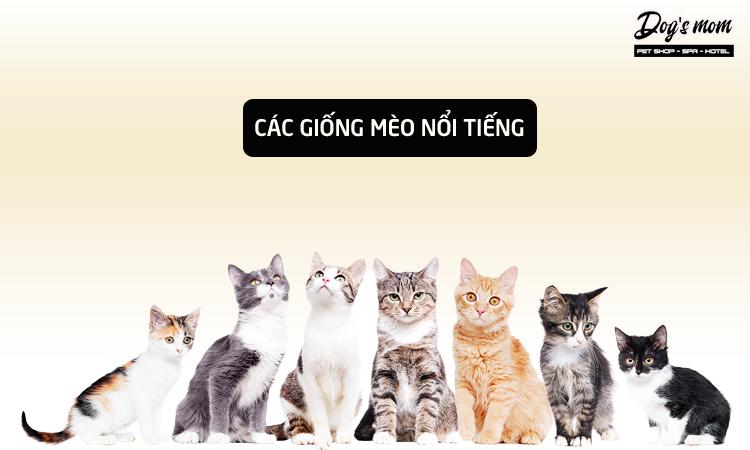 Theo giống mèo