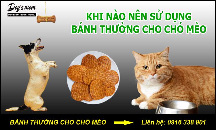 Bánh Thưởng Cho Chó Mèo