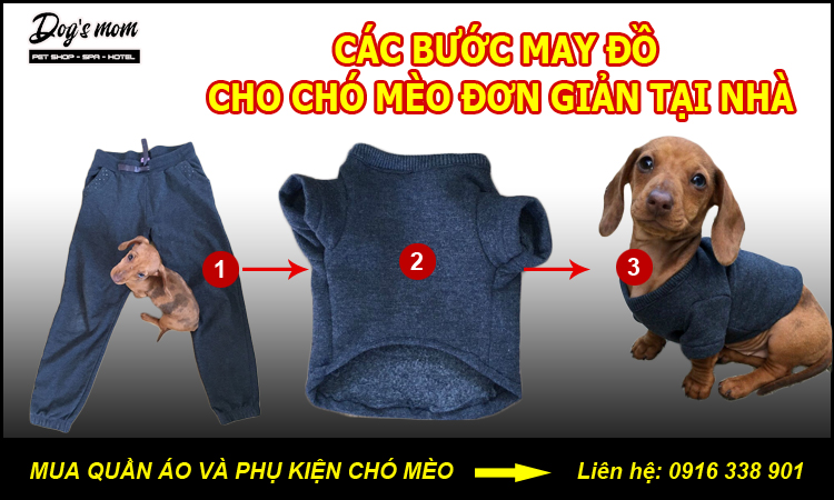 Cách may quần áo cho thú cưng