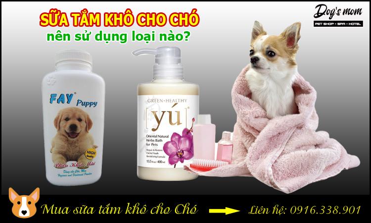 Sữa tắm khô cho chó nên sử dụng loại nào?