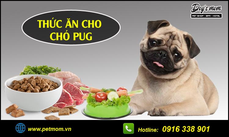 Thức ăn cho chó Pug
