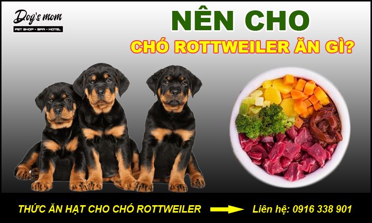 Thức ăn cho chó rottweiler