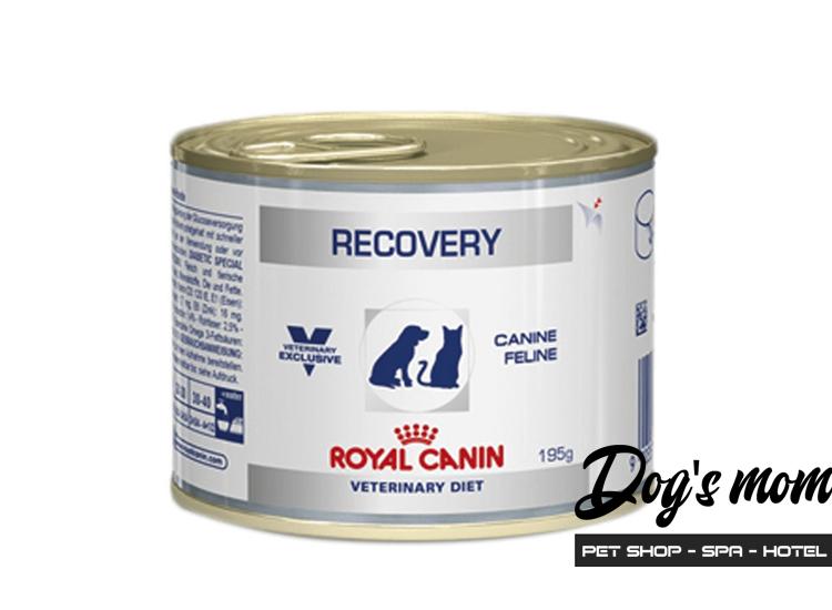 Pate hộp Royal Canin Recovery Phục Hồi Sau Bệnh