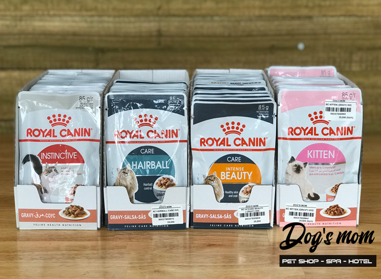 Pate gói Royal Canin Kitten